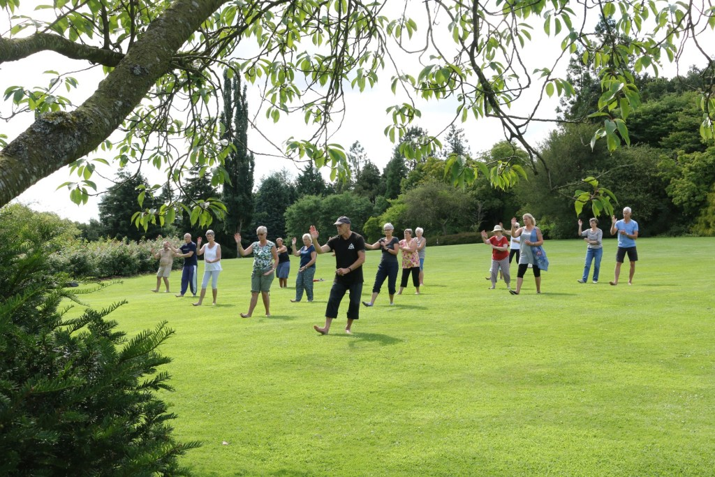 Entspannung pur: Tai Chi im Park  Geografisk Have