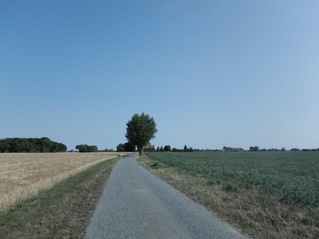 Lolland - Weg zur Olstrup Kirke