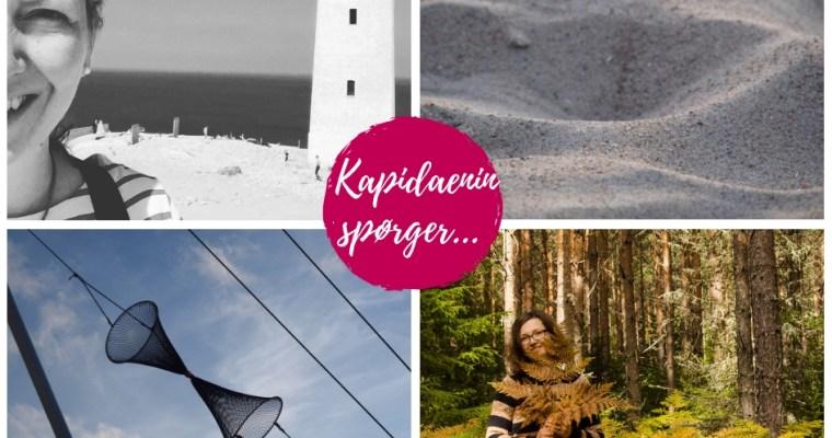 Kapidaenin spørger…Birte vom Schwedenblog  by-addy.com