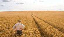 Protetto: CREDITO AGRICOLO: REGIONE VENETO ADERISCE A PIATTAFORMA DI GARANZIA DEL FONDO EUROPEO INVESTIMENTI