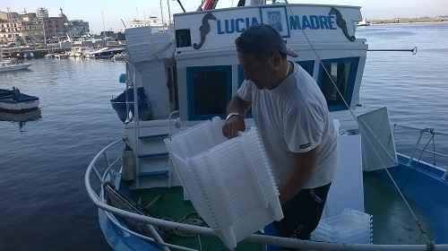Dalla Campania le cassette per il pesce: riciclabili ed economiche