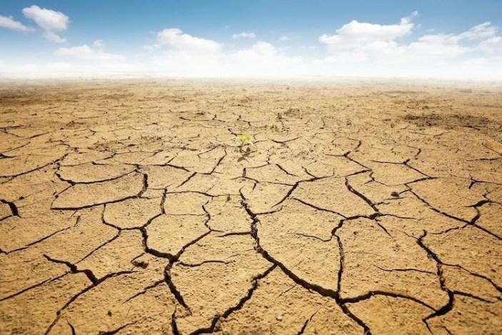 Come si presenterà il terreno del nostro pianeta se non reagiamo subito al cambiamento climatico