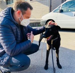Il nuovo agente della Polizia Locale di Treviso ha quattro zampe