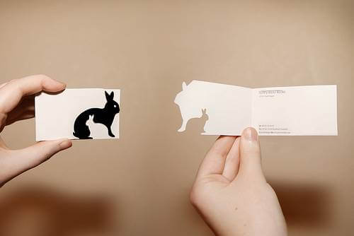rabbit-card