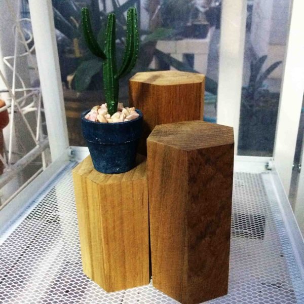 Handcrafted Natural WOOD LOG Planter(Timber Pot), House, Office, Garden Plant Pot, Unique Pot, Container, 50 to 160-mm, 2 to 6-inches(Height)