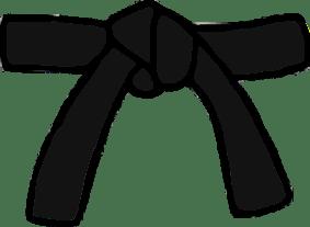 Cinturón Negro 1º Dan