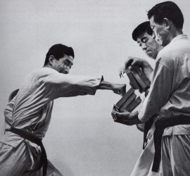 Nishiyama (Shotokan) breaking boards