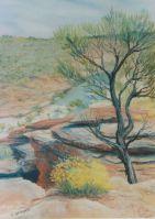 Kalbarri National Park - Pastel 31 x 26 cms