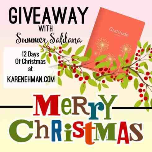 Giveaway at KarenEhman.com 12 Days of Christmas