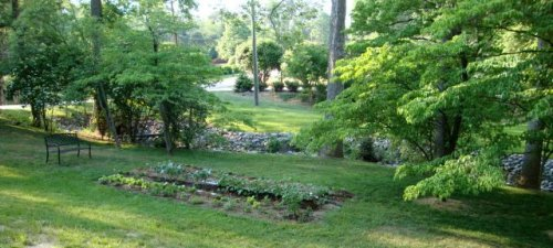 10 Tips for a Better Yard