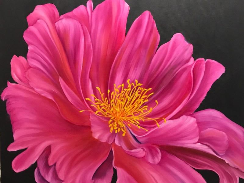 Vivid Pink