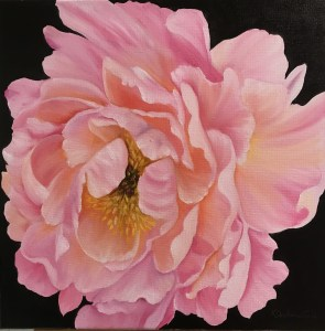 Large Pink and Peach Peony