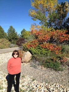 Colorado, fall, Karen Van Den Heuvel