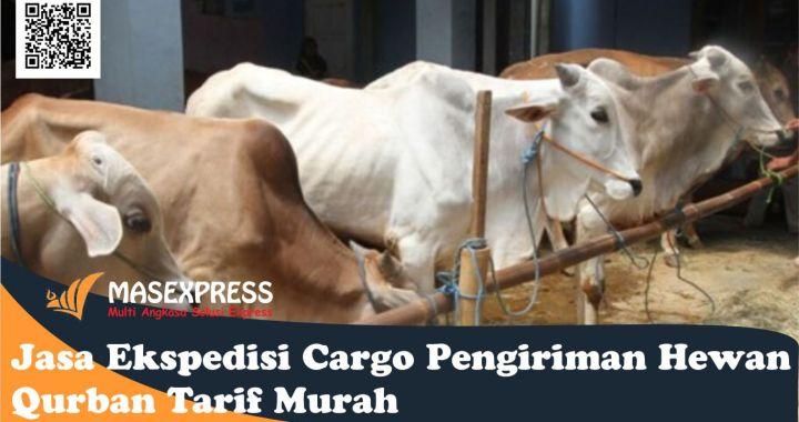 Jasa Ekspedisi Cargo Pengiriman Hewan Qurban Tarif Murah