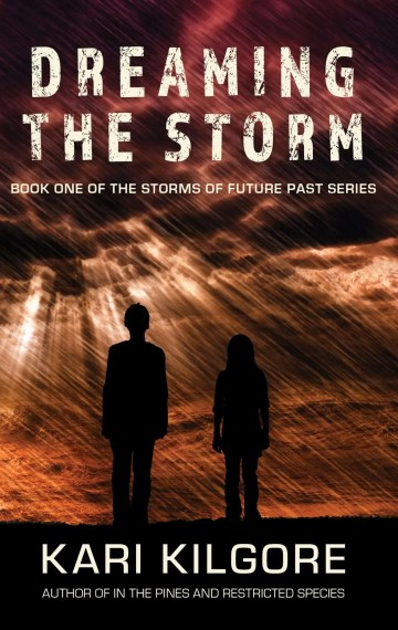 Dreaming the Storm cover