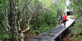 taman-nasional-karimunjawa
