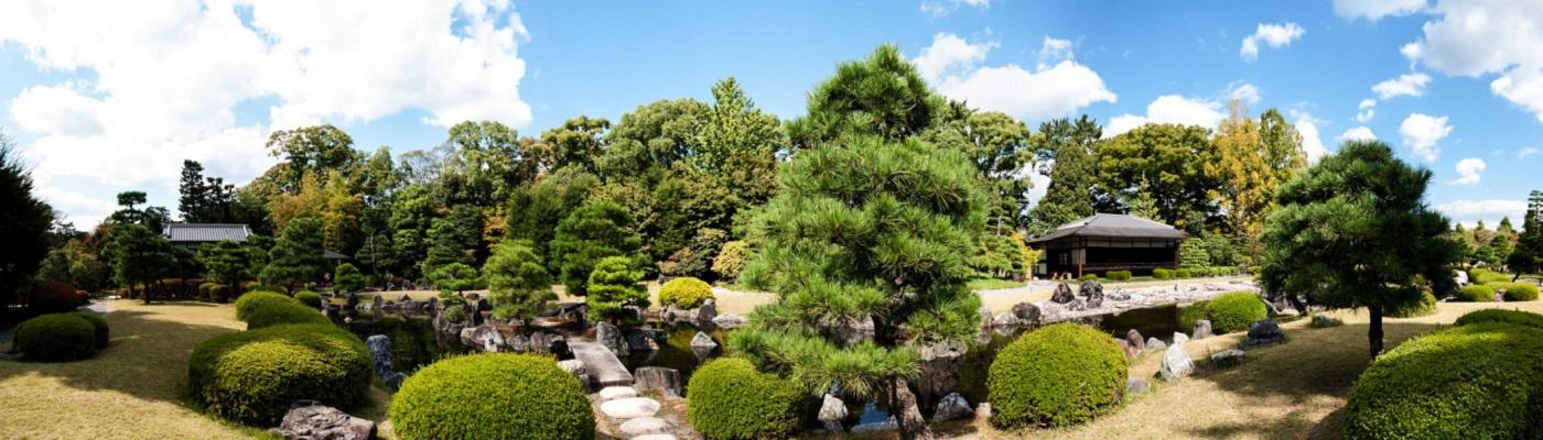 Image décorative : jardin japonais