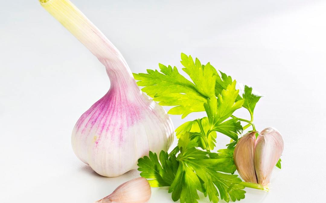 photo culinaire pour carte de restaurant