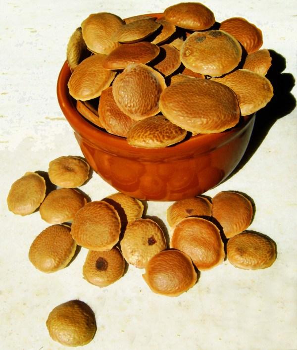 semente de sucupira