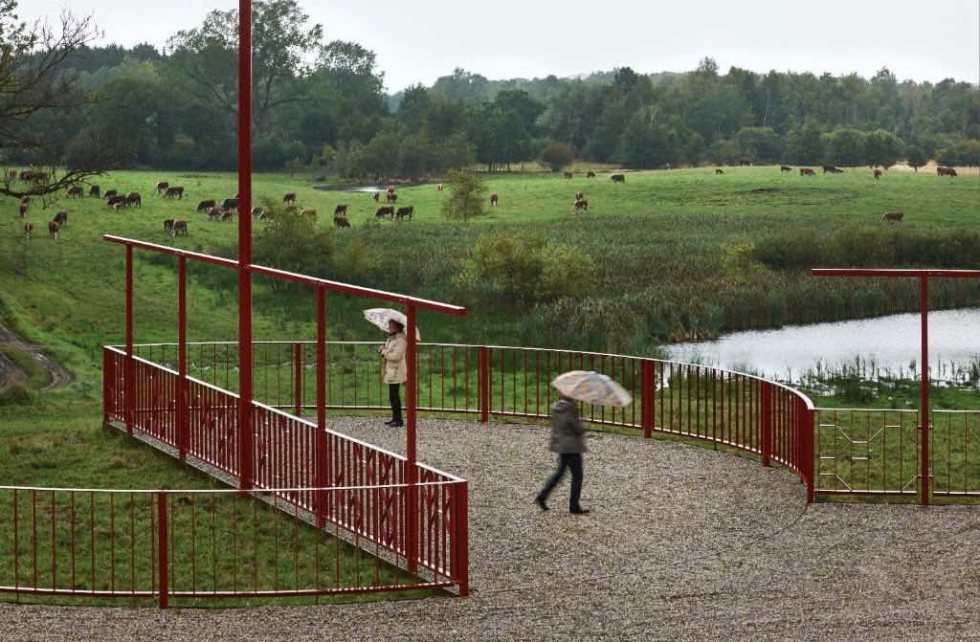 rotation-af-mennesker-og-landskab-naturstyrelsen-sollerup-statens-kunstfond