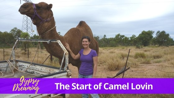 Gypsy Dreaming – Part 3 – Mount Isa Camel Lovin
