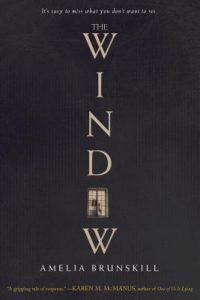The Window by Amelia Brunskill