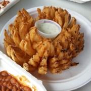 deep fried Onion