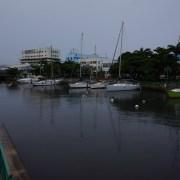 muddy water Barbados