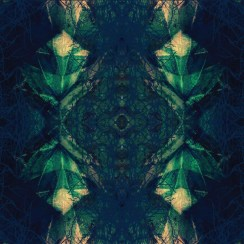 Textile Motif