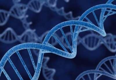 DNA.Strand
