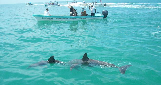 Mexico Tours - Riviera Maya