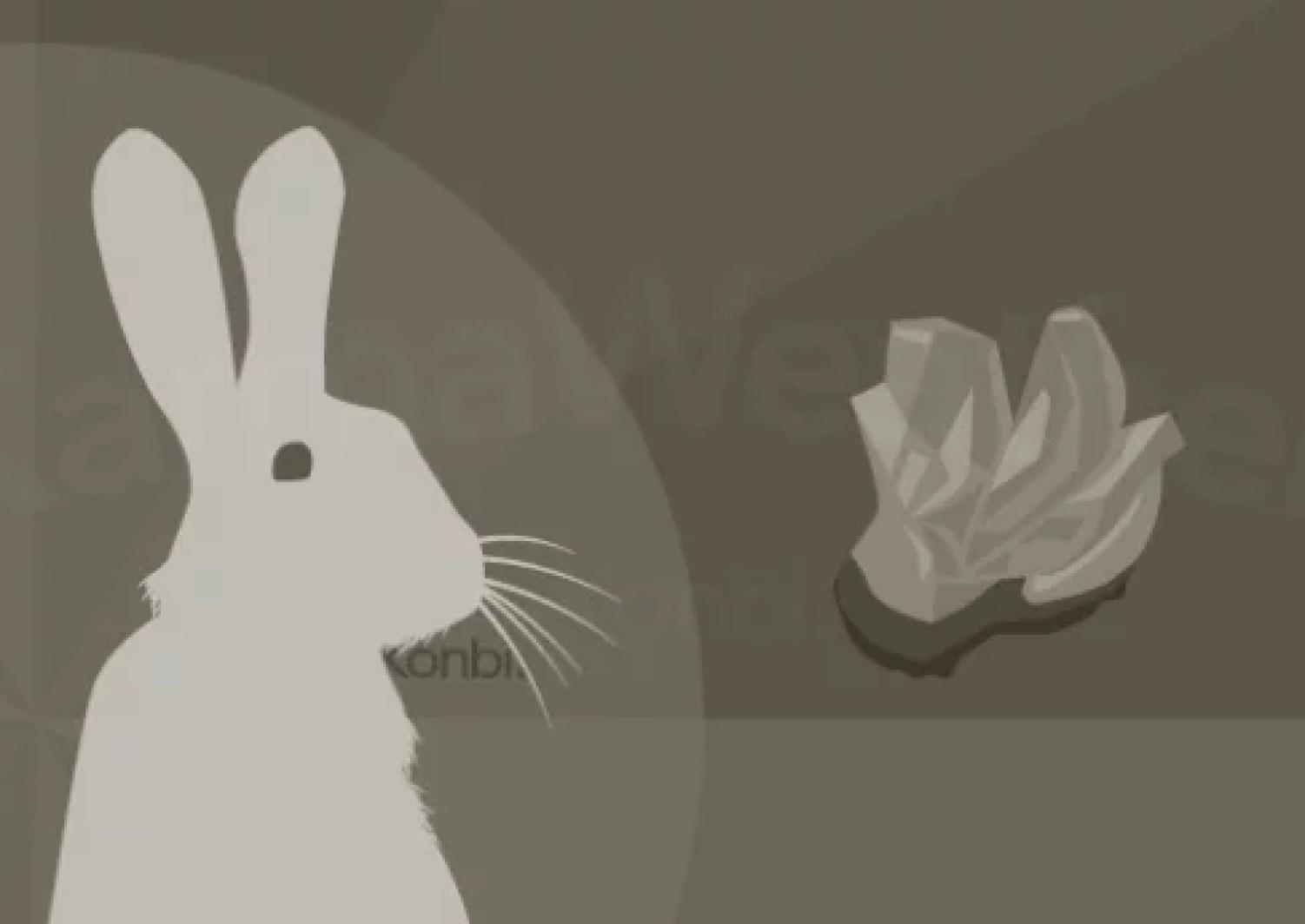 Metal Rabbit S Chinese Calendar 1951 2011