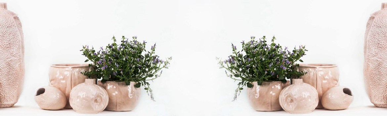 Rotten Beauty Collection.By Karm en Saat