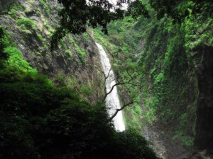 Barkana Falls, Shimoga – A Fascinating Natural Delight