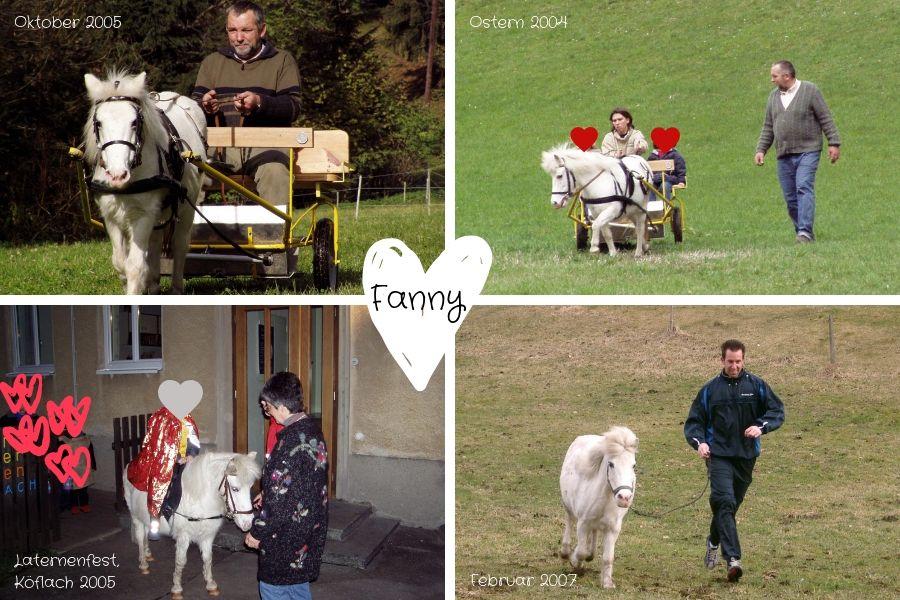 Besondere Augenblicke 2004 - 2007 mit Fanny