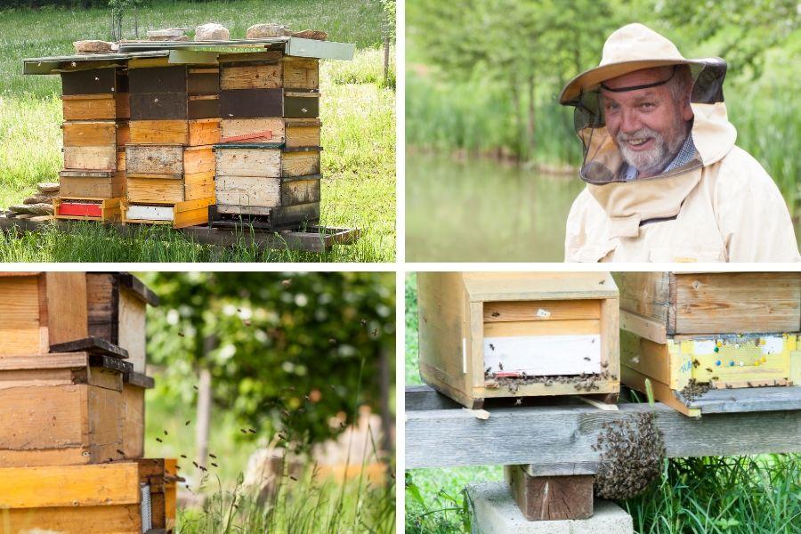 Bienen vor dem Stock- Fotos: Familie Burchhart
