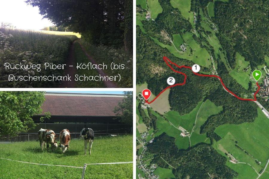 Piber - Buschenschank Schachner