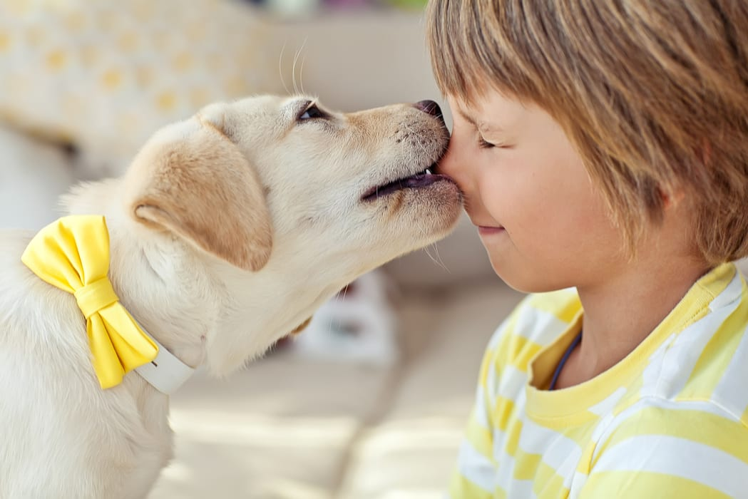 5 Tips for Keeping Your Child Safe Around Dogs