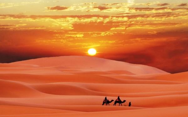 Картинка Закат в пустыне » Природа » Картинки 24 - скачать ...