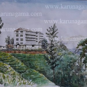 Online, Art, Art Gallery, Online Art Galley, Sri Lanka, Karunagama, Watercolor, Water Colour, Sri lanka Tea industry, Sri lanka Tea plantations, Tea plantations, Tea Factories, Tea Factories in Sri lanka, Tea factory paintings, Sri lanka paintings,