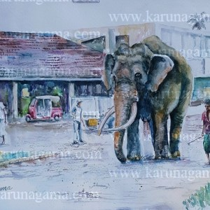 Online, Art, Art Gallery, Online Art Galley, Sri Lanka, Karunagama, Watercolor, Water Colour, Animals, Tuskers, Elephants, Sri lankan elephants, landscapes, Sri lanka streets, Elephant paintings, Tuskers paintings, Sri lanka paintings,