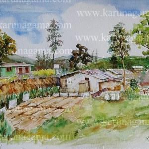 Online, Art, Art Gallery, Online Art Galley, Sri Lanka, Karunagama, Watercolor, Water Colour, Vegetable farming, Planting vegetable, Tea estates, Norwood, Hatton, Hill country, Workers in tea estates, Teaestates,