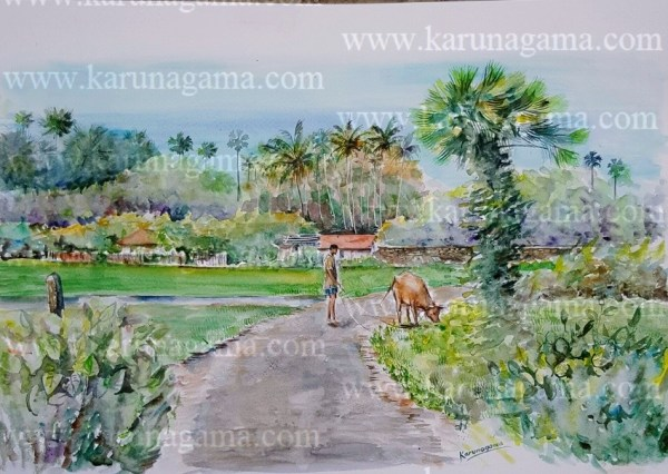 Online, Art, Art Gallery, Online Art Galley, Sri Lanka, Karunagama, Watercolor, Water Colour, Waddukoddai, Jaffna, Jaffna peninsula, Jaffna painatings, Jaffna paddy fields, Jaffna palmayrh,