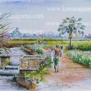 Online, Art, Art Gallery, Online Art Galley, Sri Lanka, Karunagama, Watercolor, Water Colour, Farmers, Paddy fileds, Sri lankan farmers, Anicuts, Old anicuts, Sri lankan canals.