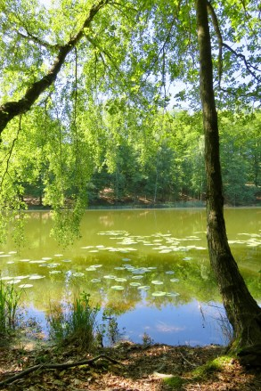 (c) kaschpar, Regenbogensee