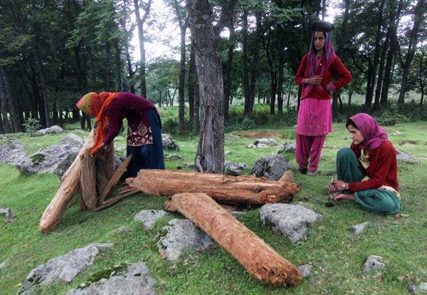 Fetching Firewood: These girls live in nearby village, who daily visits the meadow to collect firewood. People still use traditional chulas in this part of the valley. Frequently finding themselves in the line of fire, these girls have learnt to carry their routine without getting deterred by bangs around.
