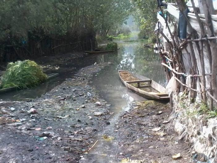 In picture: Choking Anchar Lake.