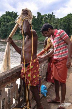 Vida en Kerala