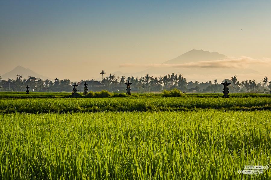 alrededores de Ubud