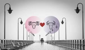 الحمل وبرج الثور التوافق في الحب و العلاقة و الجنس